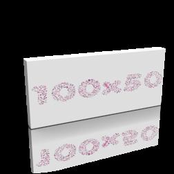 Keilrahmen - 100 x 50 cm